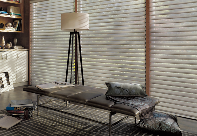 Hunter Douglas Cleveland silhouette shades