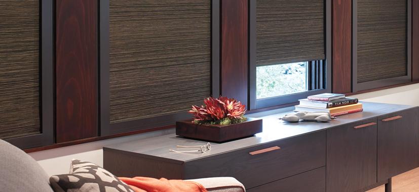 Hunter Douglas Custom Window Shades by Timan Custom Window Treatments
