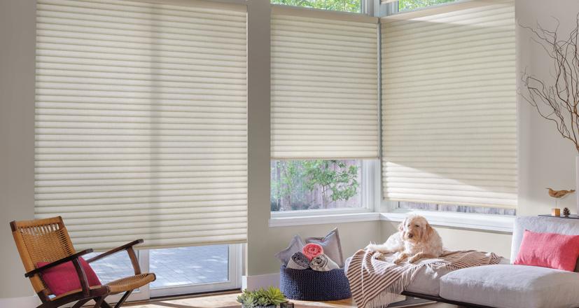 Hunter Douglas sonnette shades bedroom large windows custom window shades Cleveland 44125