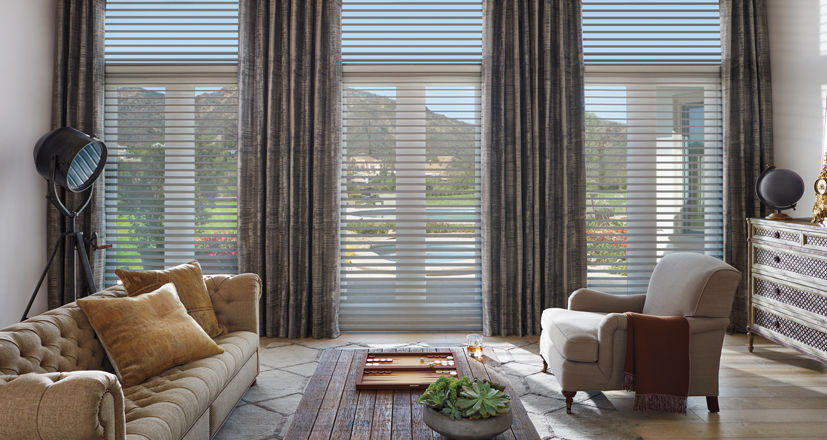 Hunter Douglas silhouette shade clearview living room