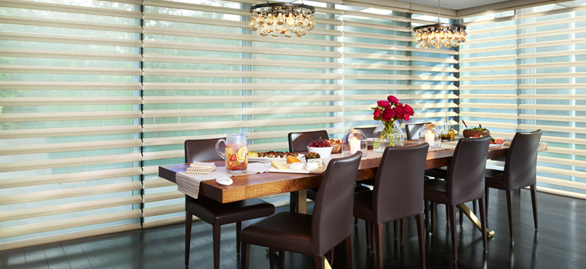 Hunter Douglas Pirouette Shades Timan Custom Window Treatments Cleveland