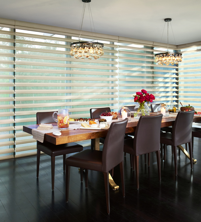 Blinds for Large Windows cleveland